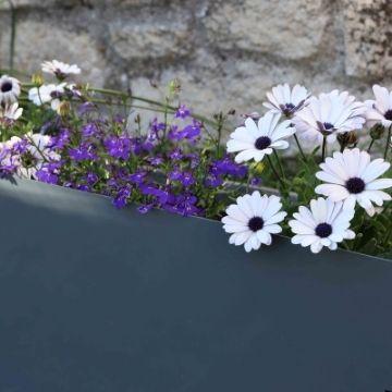Des bordures de jardin colorées !
