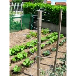 Tuteurs serpentin acier plantes grimpantes (Les 3)