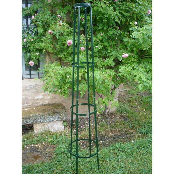 Tuteur colonne corset en acier vert pour rosier grimpant