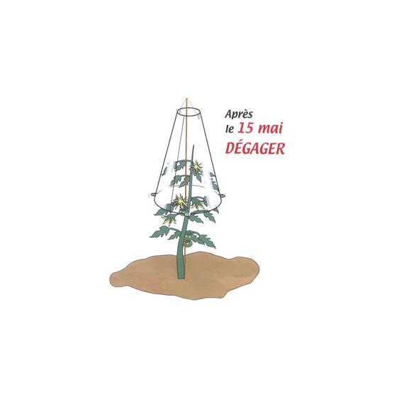 Cône de forçage potager 50 cm diamètre 30 cm