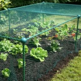 Enclos de jardin potager 2 x 1 m (filet + voile d'hivernage)